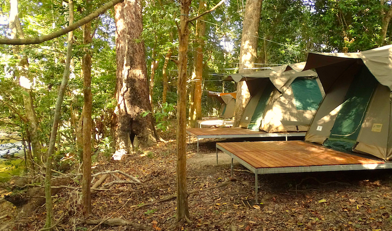 CC TJ camping Melanie Camp Cape York